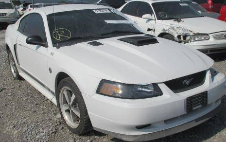 2001 Mach-1 Coupe - Image 1