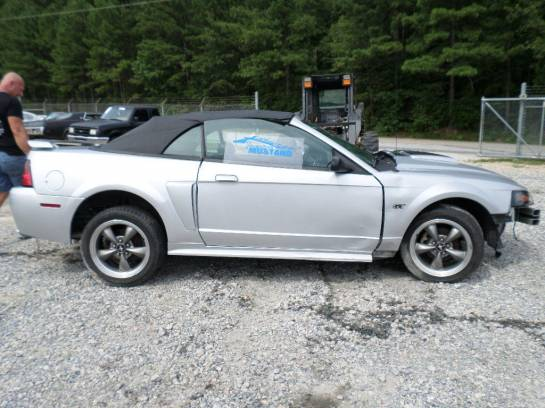 2001 Mustang Convertible - Image 1