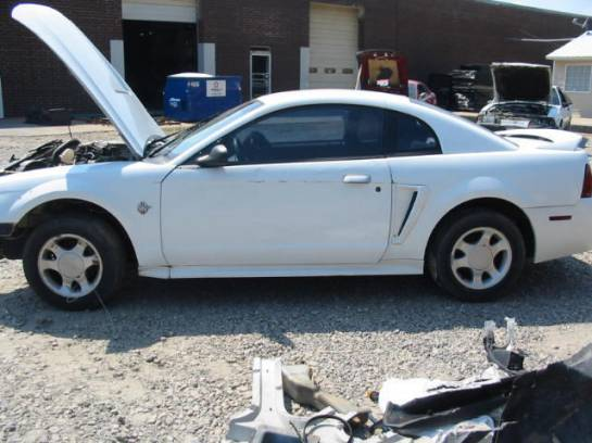 1999 Ford Mustang Coupe 4.6 4R7W Manual Transmission- White - Image 1