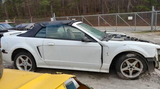 1999 Cobra Mustang Convertible - Image 1