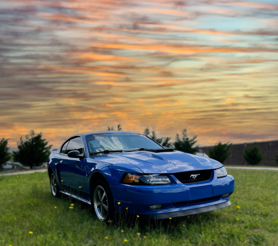 2003 Ford Mustang Mach 1 - Image 1