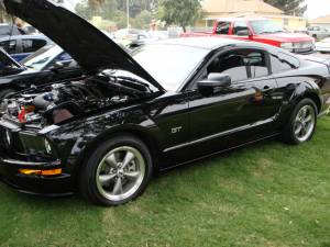 2005-2010 Mustang Gallery Cover