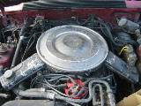 1985 Ford Mustang 5.0L - Red - Image 4