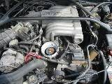 1994 Ford Mustang 5.0 V-8 5-Speed T-5 - Green - Image 3