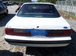 1991 Mustang Coupe - Image 3