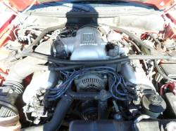1997 4.6 DOHC Cobra Coupe - Image 5