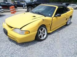 1997 4.6 DOHC Cobra Convertible - Image 2