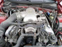1998 4.6 DOHC Cobra Coupe - Image 5