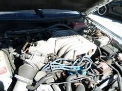 1994 5.0 Cobra Coupe - Image 3