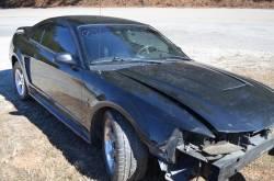 2001 Ford Mustang Cobra 4.6 DOHC - Black - Image 1