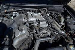 2001 Ford Mustang Cobra 4.6 DOHC - Black - Image 5