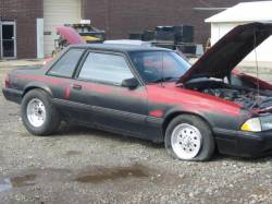 1989 Ford Mustang 5.0 HO T-5 Five Speed - Black - Image 1