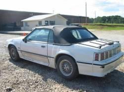 1989 Ford Mustang 5.0 V8 5 Speed - White - Image 2