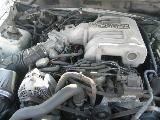 1995 Ford Mustang 5.0 Cobra Cobra T-5 - White - Image 4
