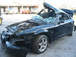 2003 Ford Mustang 4.6 5 Speed- black - Image 1