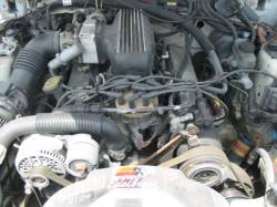 1991 Ford Mustang 5.0 with custom intake Automatic AOD - White - Image 4