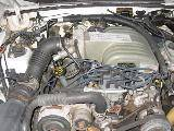 1992 Ford Mustang 5.0 Auto - White - Image 5