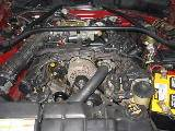 1997 Ford Mustang 4.6 Automatic - Red - Image 3