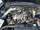 2003 Ford Mustang 4.6 T-45 Five Speed- Black - Image 4
