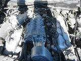 2004 Ford Mustang 4.6 4V Cobra 6 Speed- black - Image 5