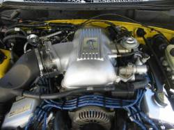 1998 Ford Mustang 4.6L DOHC T-45 - Yellow