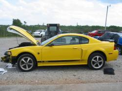 2004 Ford Mustang 4.6 4V Mach 1 Tremec 3650 5 Speed- Yellow