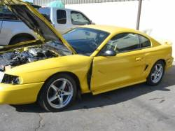 1998 Ford Mustang 5.0 COBRA T-45 Five Speed - Yellow