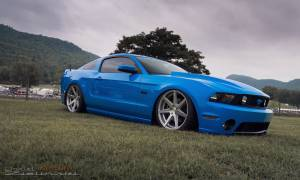Mustang Gallery Cover