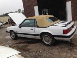 1987-1993 - Parts Cars - 1989 Ford Mustang Convertible