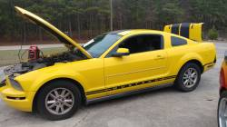 Parts Cars - 2005 Ford Mustang