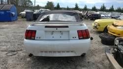 1999 Cobra Mustang Convertible - Image 3