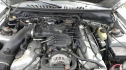 2001 Ford Mustang Cobra - Image 4