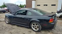 2001 Ford Mustang Cobra SVT Coupe - Image 3
