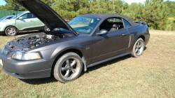 2003 Ford Mustang convertible - Image 7
