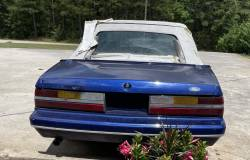 1986 Ford Mustang 5.0 LX Convertible - Image 4